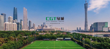 The installation is a challenge in Artificial Grass Turf Market